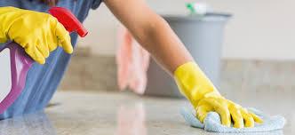 Protocolo Limpeza - Equipas AdUrbis